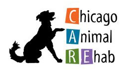 Chicago Animal Rehab